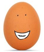 Mr Egg