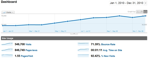 SheepTech's Google Analytics for 2010